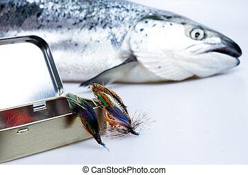 boîte, mouches, saumon, attrapé, fond
