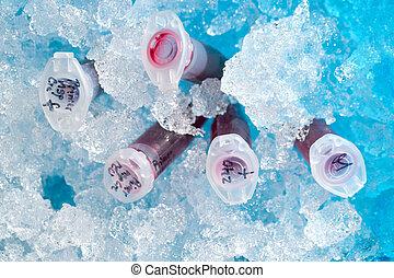 boîte, réaction, entiers, tube, glace, plastique