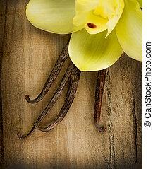 boîtiers, sur, fond, bois, vanille, fleur