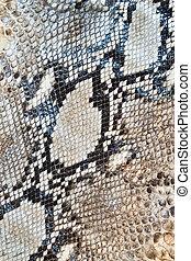 Boa snake skin pattern texture background