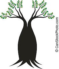 boab, árbol, image., concepto, de, cuadra