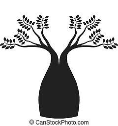boab, australier, träd