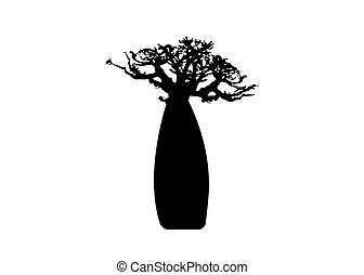 Boab or Baobab Tree Vector isolated, Andasonia tree silhouette icon. Baobabs silhouette concept sign in white background