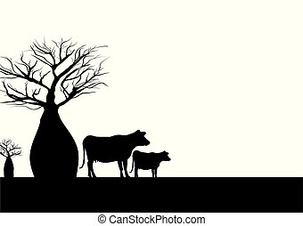 Boab tree and cows