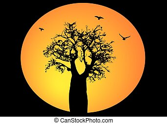 Boab tree with a moon behind and flying birds