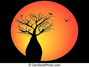 boab tree with moon and birds