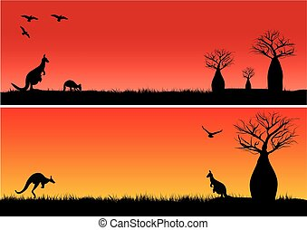 Boab trees and two kangaroos in the sunset outback Australia...