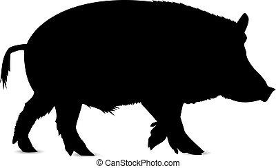 boar., silhouette