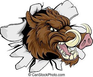boar, sport, razorback, mascot