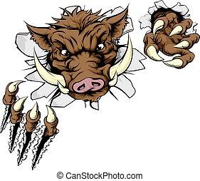 Boar sports mascot breaking wall