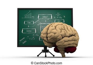 board., mózg, handlowa strategia