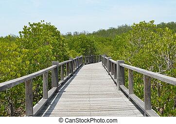 boardwalk, a, el, océano