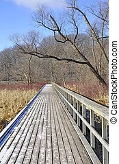 Boardwalk at Hendries