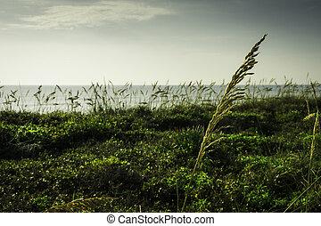 Satellite Beach in Florida