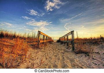 Boardwalk - Beautiful landscape with boardwalk towards the...