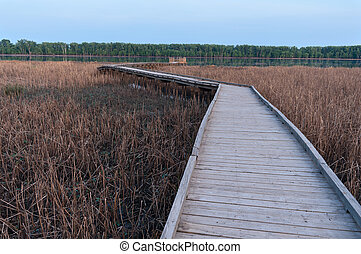 Boardwalk Crossing Marsh along Minnesota River