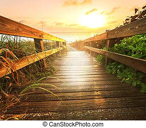 boardwalk, en, playa