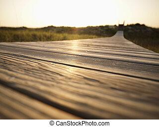 boardwalk.
