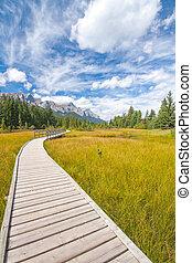 Boardwalk in Canmore, Alberta