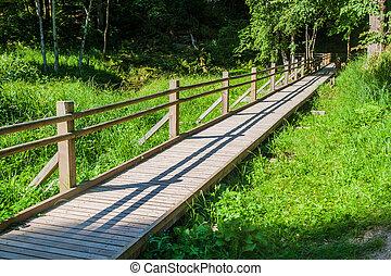 Boardwalk in Gauja National Park, Latvia