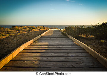 Boardwalk in the beach at sunset background