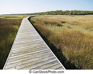 boardwalk , marsh.