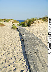 Boardwalk to the beach inthe south of Sweden.