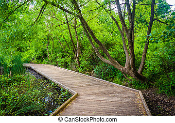 Boardwalk trail at Patterson Park, Baltimore, Maryland.