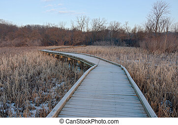 Boardwalk Wetlands and Forest at Refuge
