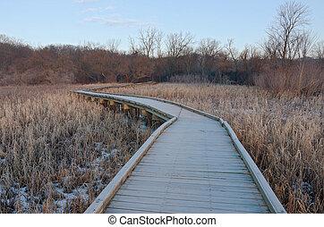 Boardwalk Wetlands and Forest at Refuge