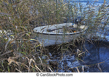 Boat and reed on a lake