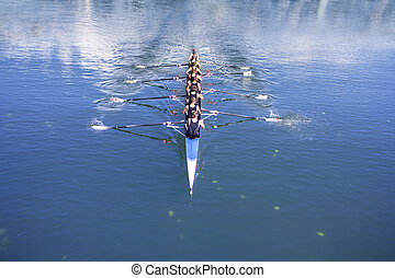Boat coxed with eight Rowers - Rowers in eight-oar rowing...