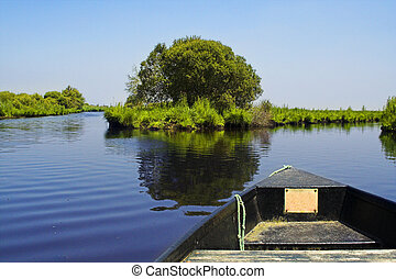 boat in a swamp