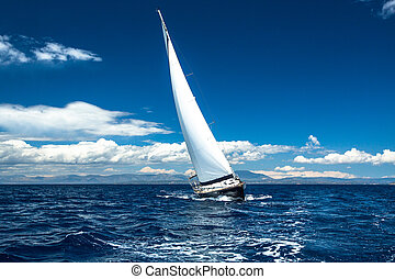 Boat in sailing regatta.