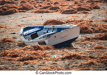 Boat in the beach after the storm