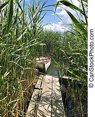 Boat in the reeds.