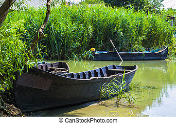 Boat in the reeds
