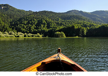 Boat in the wilderness