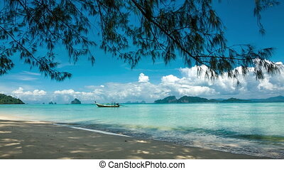 Boat near shore and coniferous tree
