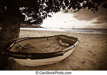 boat on a beach with ocean in the background