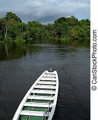 Boat on Rio Negro, Brazil - Boat on Rio Negro, in the...