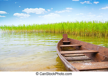 boat on the bank of lake - boat in a high cane on the bank ...
