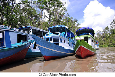 Boat on the River - River boats at National Park Tanjung...