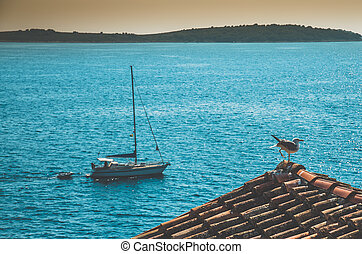 boat on the sea and seagull on the roof