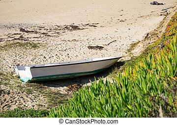 Boat shipwrecked on a beach, California