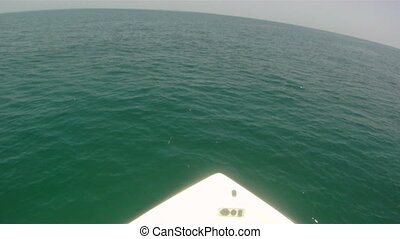 Boat Speed Point of View
