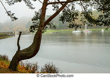 boat through the tree - Lithuanian landscape come the fall ...