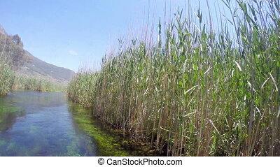 """boat trip, reeds, bizarre underwater of azmak river,..."