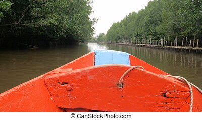 Boat view moving forward nearly mangrove forest at the river...