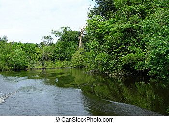 Boat wakes - Boat wakes on a lagoon on Rio Negro in the...